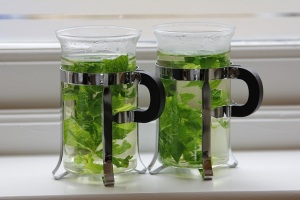 mint and stevia in hot water